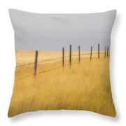Barley Field And Fenceline, Southern Throw Pillow