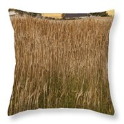 Barley Field Throw Pillow
