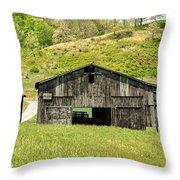 Barn - Tire Center Throw Pillow