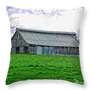 Barn 26 Throw Pillow