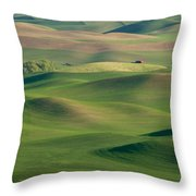 Barn Among The Contours Throw Pillow