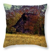 Barn And Diamond Reo-featured In Barns Big And Small Group Throw Pillow