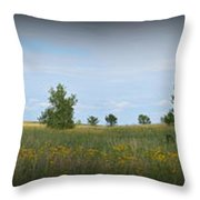 Barn At Trailsend 2 Throw Pillow