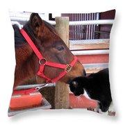 Barn Buddies Throw Pillow