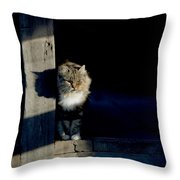Barn Cat Throw Pillow