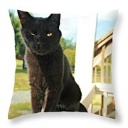 Barn Cat Pose Throw Pillow