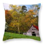 Barn Colors Throw Pillow