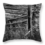 Barn Edge  Throw Pillow