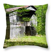 Barn From The Forgotten Farm 3 Throw Pillow
