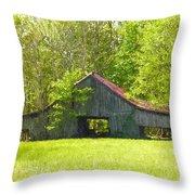 Barn From The Forgotten Farm Throw Pillow