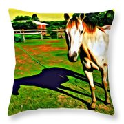 Barn Horse Throw Pillow