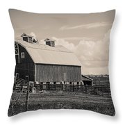 Barn In Polaroid Throw Pillow
