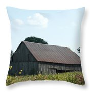 Barn In The Grass Throw Pillow