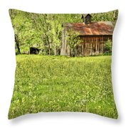 Barn In Wild Turnips Throw Pillow