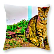 Barn Kitty Throw Pillow