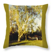 Barn Landscape Throw Pillow