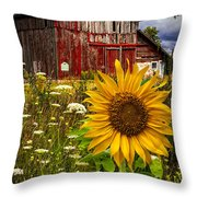 Barn Meadow Flowers Throw Pillow
