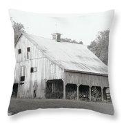 Barn Missouri Bottomlands Throw Pillow