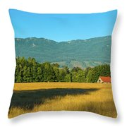 Barn On Cascade Road In Rockport Throw Pillow