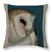 Barn Owl 2 Throw Pillow