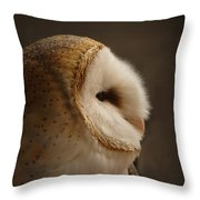 Barn Owl 3 Throw Pillow