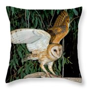 Barn Owl Alights Throw Pillow