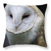 Barn Owl No.1 Throw Pillow