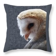 Barn Owl Painterly Throw Pillow