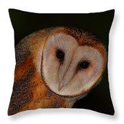 Barn Owl Portrait II Throw Pillow