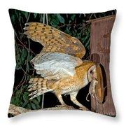 Barn Owl With Prey Throw Pillow