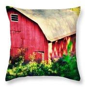 Barn Red Sunset Throw Pillow