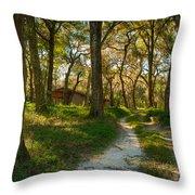 Barn Road Throw Pillow