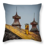 Barn Roof In Color Throw Pillow
