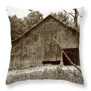 barn Sepia 2 Throw Pillow