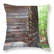 Barn Side Story Throw Pillow