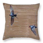 Barn Swallow In Flight Throw Pillow by Mike Dickie