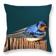 Barn Swallow Perching Throw Pillow