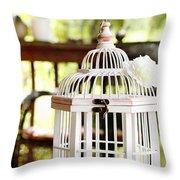 Barn Swallow Throw Pillow by Stephanie Frey