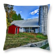Barn - The Old Horse Throw Pillow