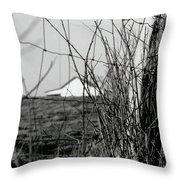 Barn Through Fence Throw Pillow