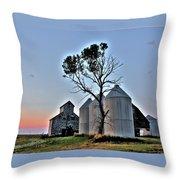 Barn Tree Throw Pillow