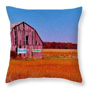 Barn Van Dyke Throw Pillow