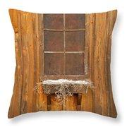 Barn Window 3348 Throw Pillow