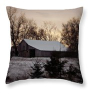 Barn Wood Throw Pillow