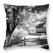 Barn Yard Throw Pillow