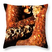 Barnacles And Rust  Throw Pillow