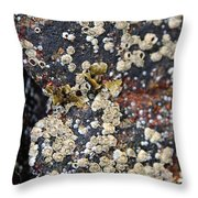 Barnacles Throw Pillow