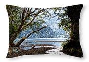 Barnes Creek At Lake Crescent - Washington Throw Pillow
