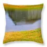 Barnflection Throw Pillow