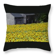 Barns And Sunflowers Throw Pillow